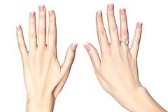 Belle mani femminili su un fondo bianco. Fotografia Stock