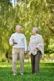 Belle marche supérieure caucasienne de couples Photographie stock