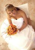 Belle mariée image libre de droits