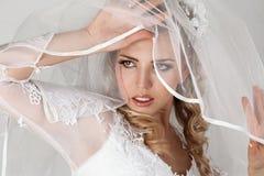 Belle mariée Image stock
