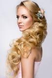 Belle mariée avec la coiffure de mariage de mode Photos libres de droits