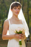 Belle mariée avec le mariage Photographie stock