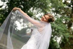 Belle mariée avec le voile photographie stock libre de droits