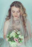 Belle mariée dans la robe de mariage Photo libre de droits