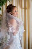 Belle mariée de brunette Images stock