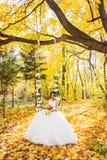 Belle mariée en stationnement d'automne images libres de droits