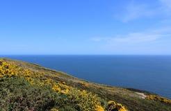 Belle mer, Howth, Dublin Bay, l'Irlande, roches, falaise et pierres Image libre de droits