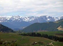 Belle montagne carpatiche Fotografia Stock