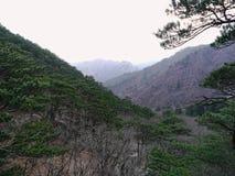Belle montagne in Corea del Sud Immagine Stock
