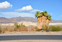 Belle montagne de la Californie, paysage de désert Images stock