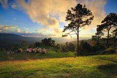 Belle montagne del fondo della natura di tramonto immagine stock