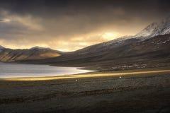 Belle montagne della neve del paesaggio sul lago del pangong con il fondo crepuscolare di tramonto Leh, Ladakh, India immagine stock