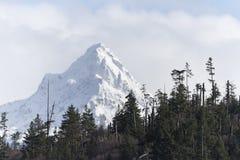 Belle montagne in Homer Alaska immagine stock