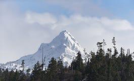 Belle montagne in Homer Alaska immagine stock libera da diritti