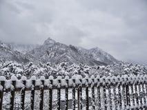 Belle montagne sotto la neve Immagine Stock Libera da Diritti