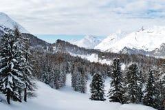Belle montagne svizzere coperte di neve, a Sils Maria Immagine Stock Libera da Diritti