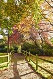 Belle nature d'automne dans des jardins de Horniman, Londres, R-U Photographie stock libre de droits