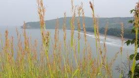 Belle nature, mer, montagne, Kokan images stock