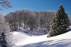 belle neige de ski d'horizontal de destination Images stock