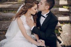 Belle nozze delle coppie Immagine Stock