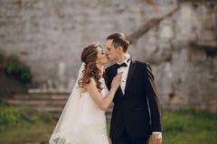 Belle nozze delle coppie Fotografie Stock