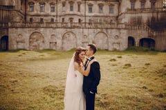 Belle nozze delle coppie Immagini Stock Libere da Diritti