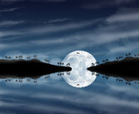Belle nuit de clair de lune Photographie stock