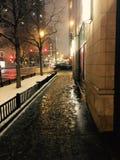 Belle nuit de l'hiver Photos stock