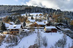 Belle pente de colline avec des arbres d'hiver dans la neige Photographie stock