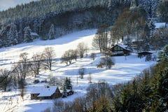 Belle pente de colline avec des arbres d'hiver dans la neige Image stock
