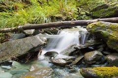 Belle petite cascade sur l'île du sud du Nouvelle-Zélande Photo stock