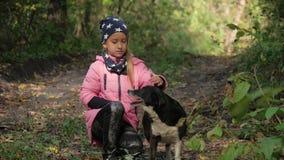 Belle petite fille ainsi qu'un chien en beau parc d'automne temps ensoleillé Fin vers le haut outdoors banque de vidéos