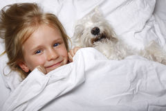 Belle petite fille blonde riant et se trouvant avec le chiot blanc de schnauzer sur le lit blanc Concept d'amitié Photos stock