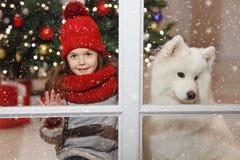 Belle petite fille près d'un grand chien blanc dans la rue d de Noël Photos stock