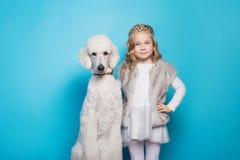 Belle petite princesse avec le chien Amitié pets Portrait de studio au-dessus de fond bleu Images stock