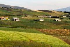 Belle piantagioni del campo del raccolto in Oyacachi Immagine Stock