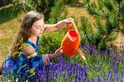 Belle piante di innaffiatura della ragazza in un giardino immagine stock