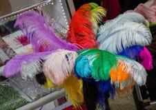 Belle piume di uccello per gli obiettivi decorativi Fotografia Stock