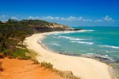 Belle plage avec des palmiers photographie stock libre de droits