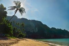 Belle plage avec des paumes Thaïlande Photographie stock libre de droits