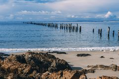 Belle plage chez Bridport, Tasmanie, Australie Images stock