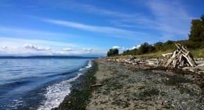 Belle plage d'océan avec des rondins Photo libre de droits