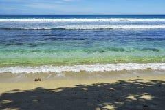 Belle plage de paradis, sable blanc, l'eau de turquoise, paumes, seych Photo stock