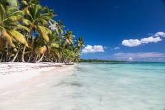 Belle plage des Caraïbes sur l'île de Saona, République Dominicaine  image stock