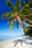Belle plage tropicale à l'île exotique dans Pacifique Images stock