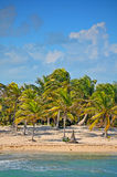 Belle plage tropicale Photographie stock