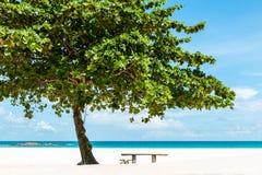 Belle plage tropicale en Indonésie image libre de droits