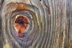 Belle planche en bois nouée par sapin Images libres de droits