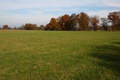 Belle prairie dans l'automne Images stock