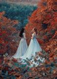 Belle princesse deux photo stock